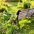 Sunset Bench by janetlee