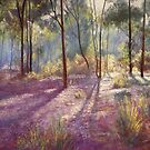 'Ironbark Shadows' by Lynda Robinson