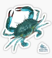 """Blue Crab"" by Amber Marine, watercolor painting, © 2013 Sticker"