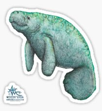 """""""Mossy Manatee"""" by Amber Marine ~ Watercolor and ink painting, art © 2016 Sticker"""