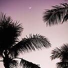 Sunset in Kailua by marinakay