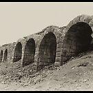 Old Lime Stone Kilns - Rosedale by Trevor Kersley