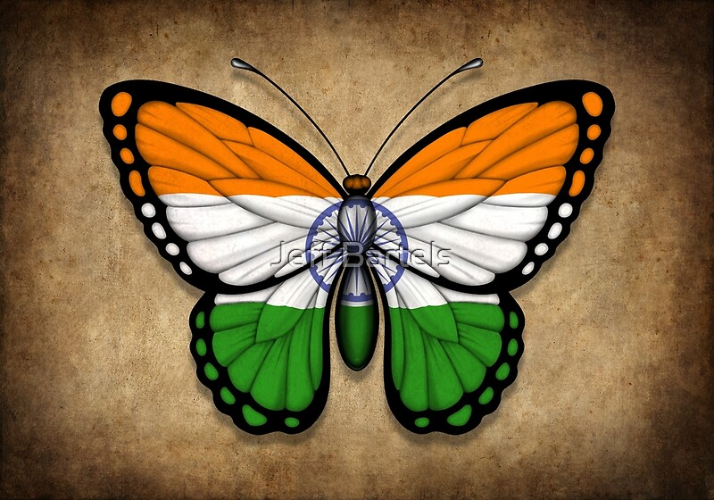 "Indian Flag Butterflies: ""Indian Flag Butterfly"" Posters By Jeff Bartels"