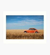 Orange Beetle Bug in corn field Art Print