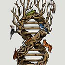 Infinitree of Life by Alan Kennedy