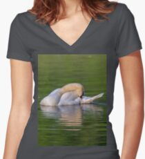 Mute swan in the early morning light Women's Fitted V-Neck T-Shirt