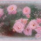 Pink Roses by Elaine Teague