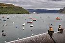 The harbour at Portree, Isle of Skye by Richard Flint