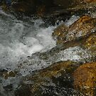 Water Colors III by christiane