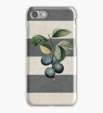 botanical stripes - plums iPhone Case/Skin