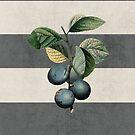 botanical stripes - plums by beverlylefevre