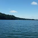 Beauty of the Lake by Tamara Lindsey