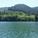 Hills Over the Lake by Tamara Lindsey