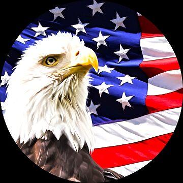 Bald Eagle by Tr0y