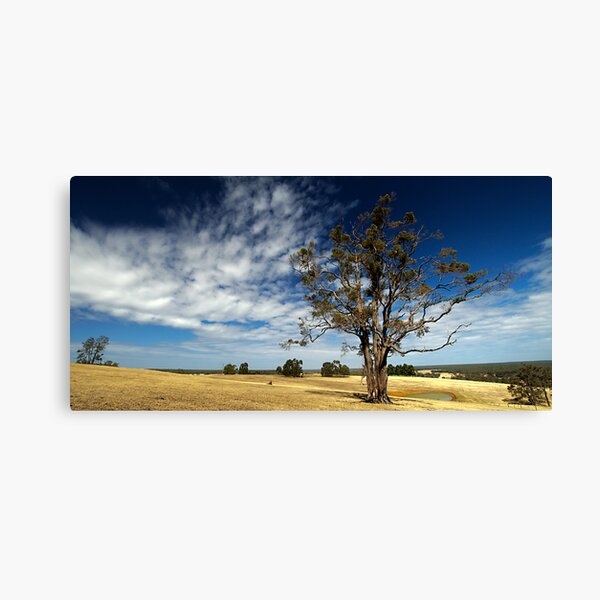 A Sun Burnt Country Canvas Print