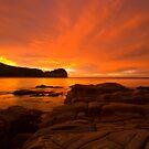 While You Were Sleeping - Bouddi NP, NSW by Malcolm Katon