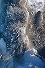 Kilauea Volcano at Kalapana 3a by Alex Preiss