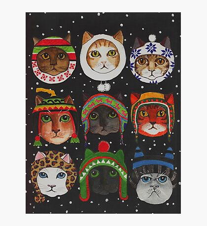 Cats in Winter Hats Photographic Print