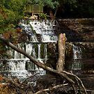 Waterfall by Kristina K