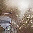 The Old Shed by Terri Chandler