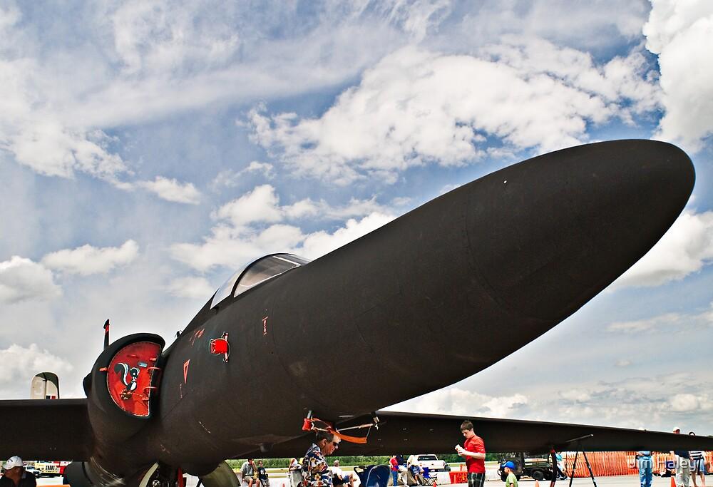 U-2 Spyplane by Jim Haley