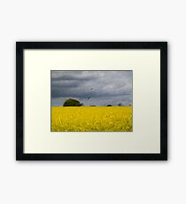 Rapeseed Fields - Impressionist - Oil Painting Effect Framed Print