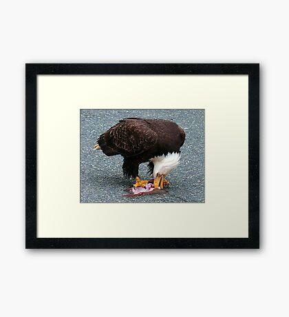 A Gift Of Appreciation Framed Print