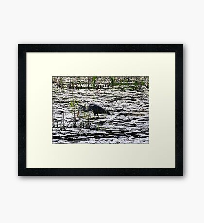 Economy of Movement Framed Print