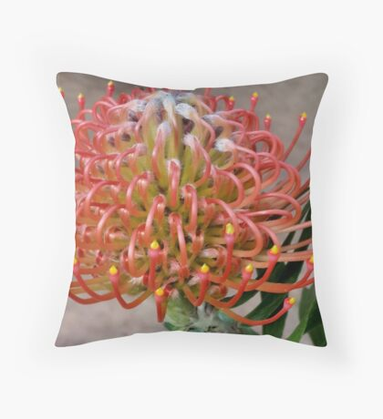 MOTHERS DAY ! Throw Pillow