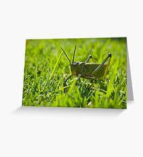 Locust - Head on Greeting Card