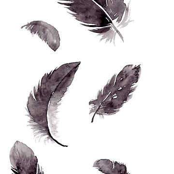 black feathers by rhebroman