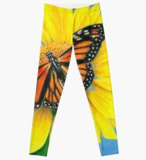 Butterfly on Sunflower Leggings