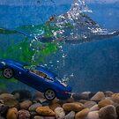 Jaguar XK by Alan Organ LRPS