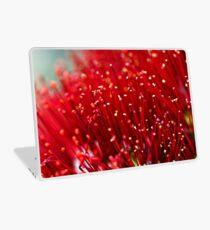Pohutukawa Flower Laptop Skin