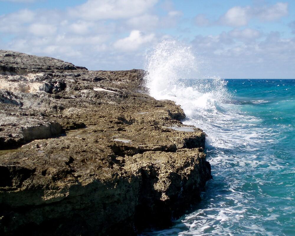 Sea Crash by jammin245