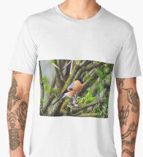Male bullfinch Men's Premium T-Shirt