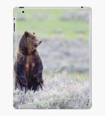 Standing Griz iPad Case/Skin