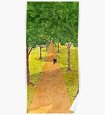 Dog Underneath the Shadow of Trees Poster