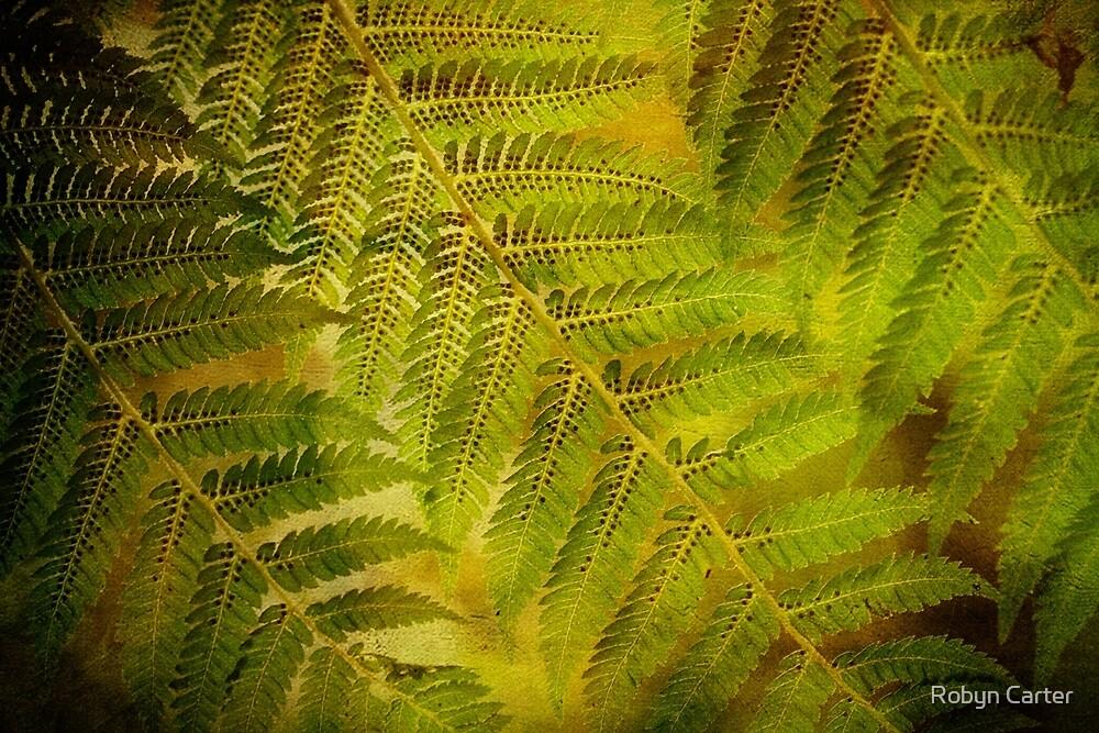 Bush Ferns by Robyn Carter