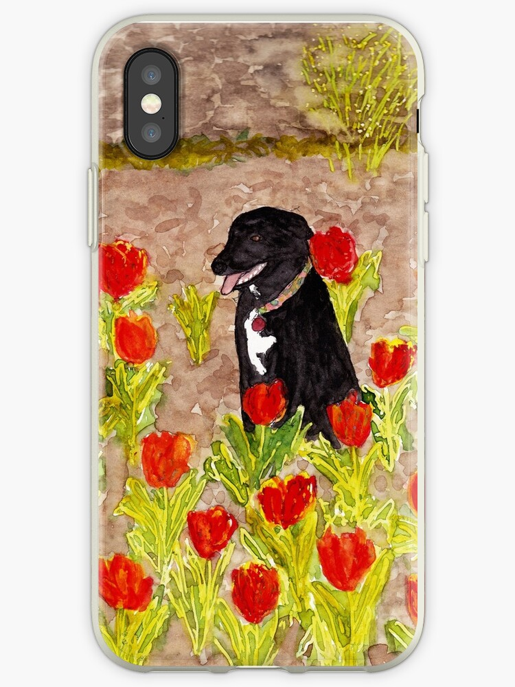 Black Dog in Red Tulips by danvera