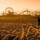 Santa Monica Beach, year 2100 by AndrewStadnyk