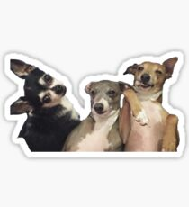 Marbles, Kermit And Peach Sticker