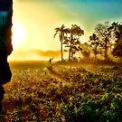 Morning Journey by Sagar Lahiri