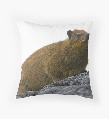Dassie Throw Pillow