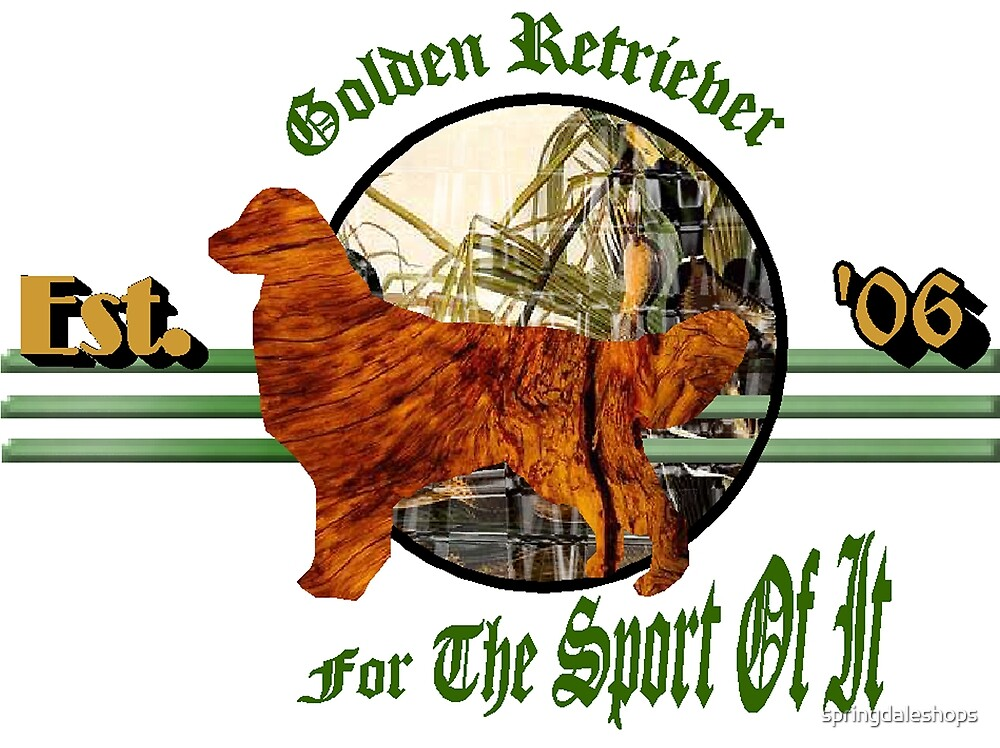 Golden Retriever For the Sport of It by springdaleshops
