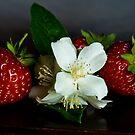 Jasmine with strawberries by Andrea Rapisarda