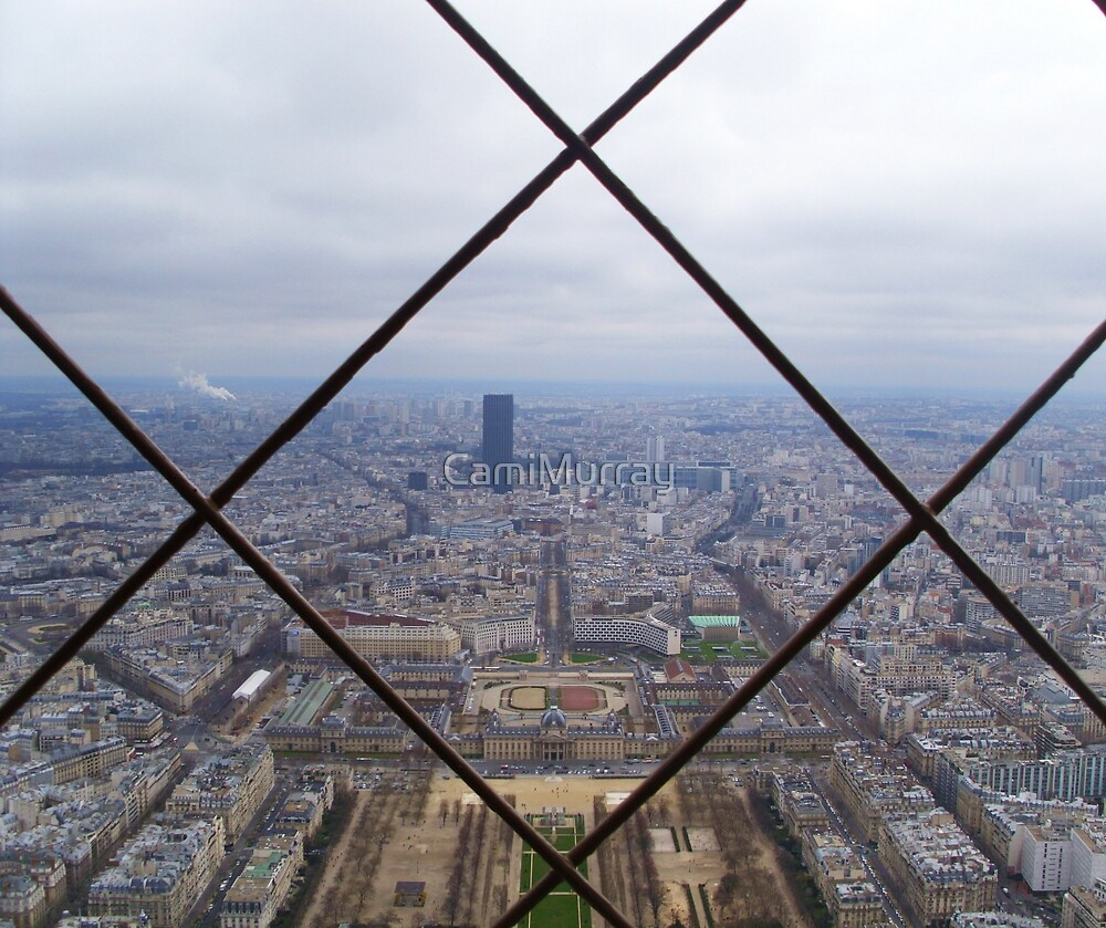 Paris from Above by Camille Murray