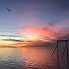 Heron Island Sunset  by Annie Smit