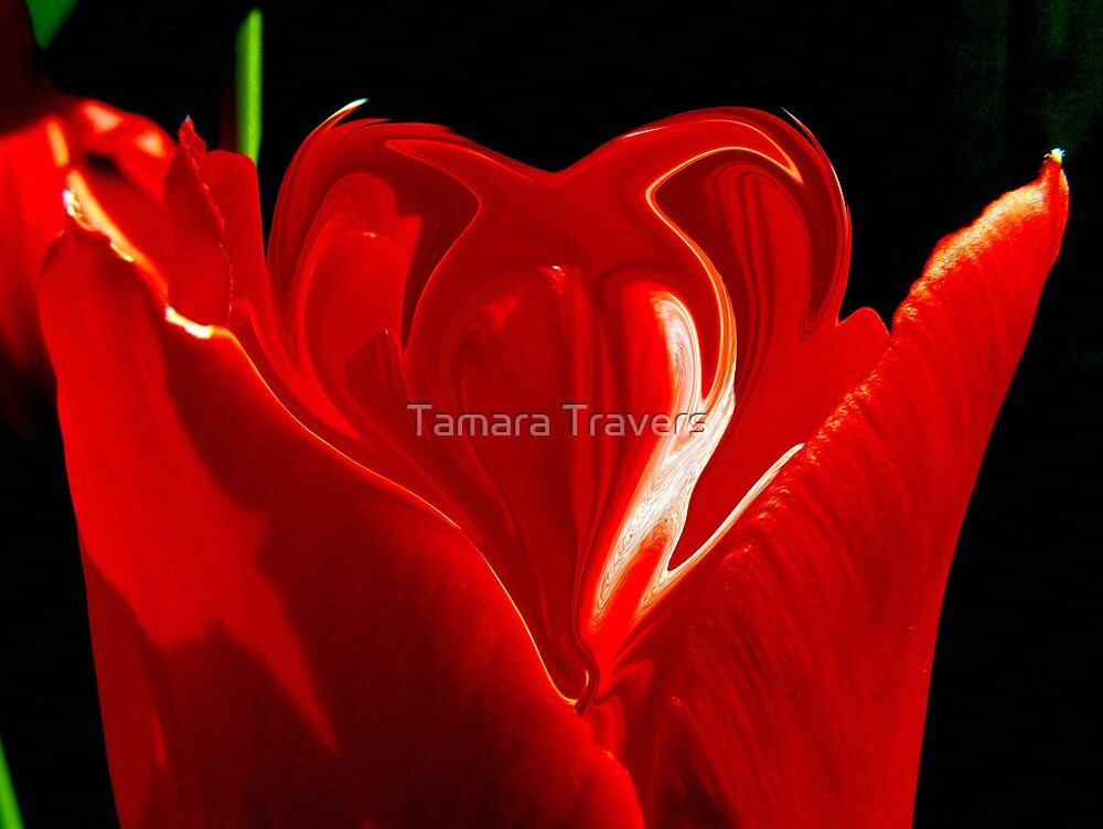 Love is in the air... by Tamara Travers
