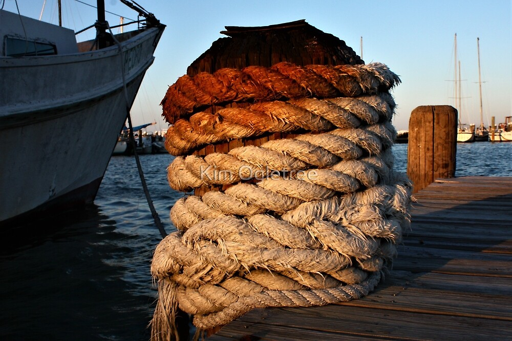 Dock with ship ropes and pier. by Kim Ogletree